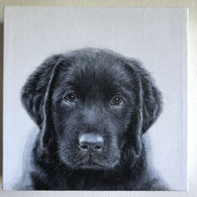Ruby-Sold Pet Portraits