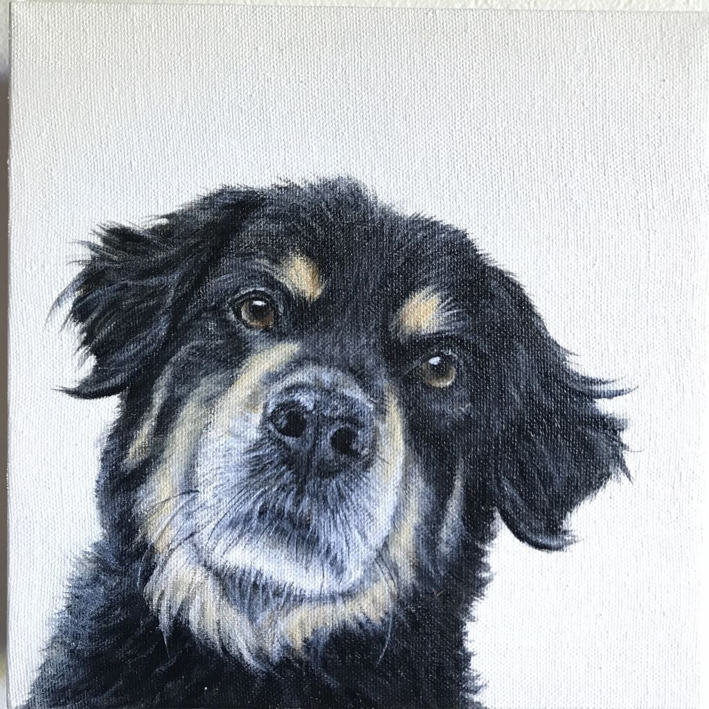 Bernie-Sold Pet Portraits