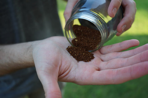 Holding freshly ground coffee in hand