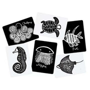 Wee Gallery black and white Art Cards For Baby sea Collection