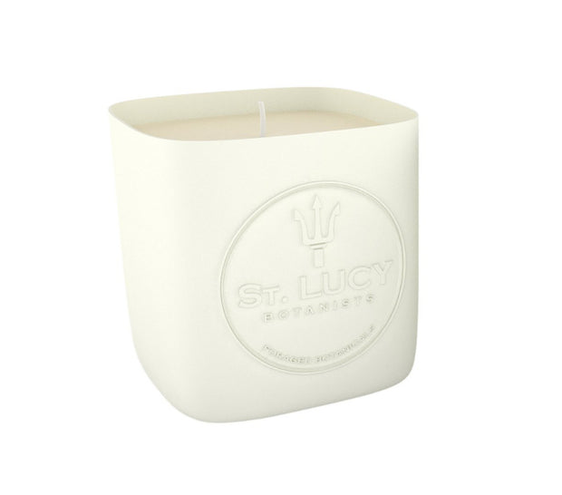 ST. Lucy Botanists Soy wax Candle Cilantro