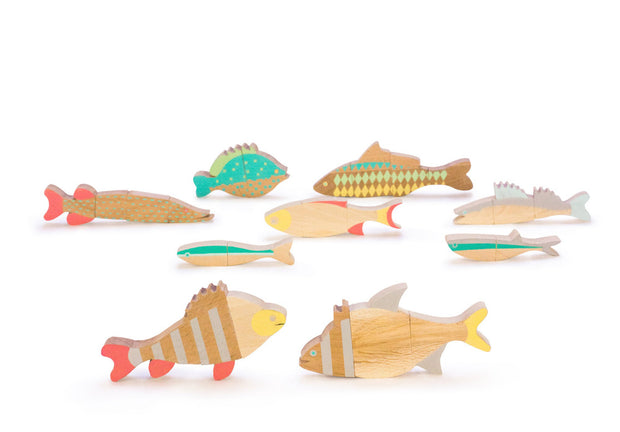 Eperfa Magnetic Puzzle - The Fishes of Balaton