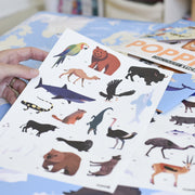 Poppik Discovery Sticker Poster Animals of the World