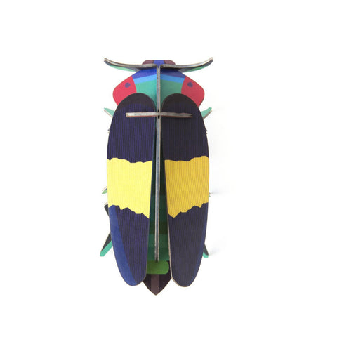 studio roof 3d cardboard jewel beetle