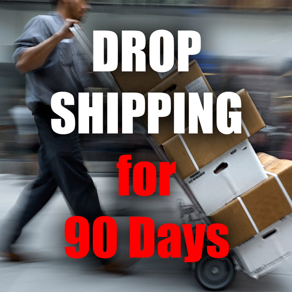 90 Days of Drop Shipping