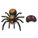 Remote Control Super Spider.  Your cat's new pal.