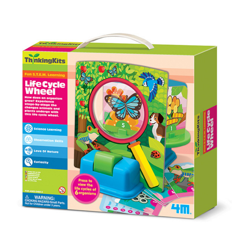 Life Cycle Wheel 4M - babycentro-com - 4M