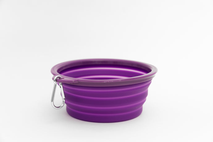 Collapsible Water Bowl - Purple