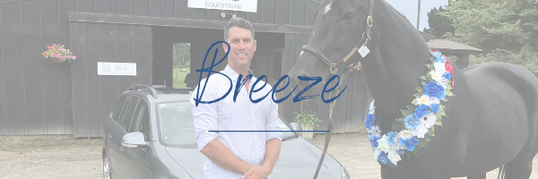 breeze, greg smith, equestrian, equestrian jewellery, equestrian gifts, riding, tie slide, sterling silver, horse, horse jewellery, horse necklace, horse bracelet, riding jewellery, earrings, nz jewellery, designer jewellery