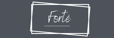 forte, sterling silver, classic silver, modern, necklaces, earrings, bracelets, nz jewellery, high quality, nz designer, nz designed