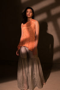Salmon pleated top with organza pants