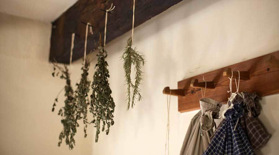DIY: How to Dry Your Own Herbs