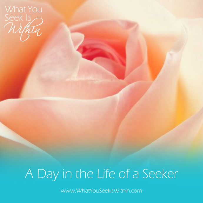 A Day in the Life of a Seeker