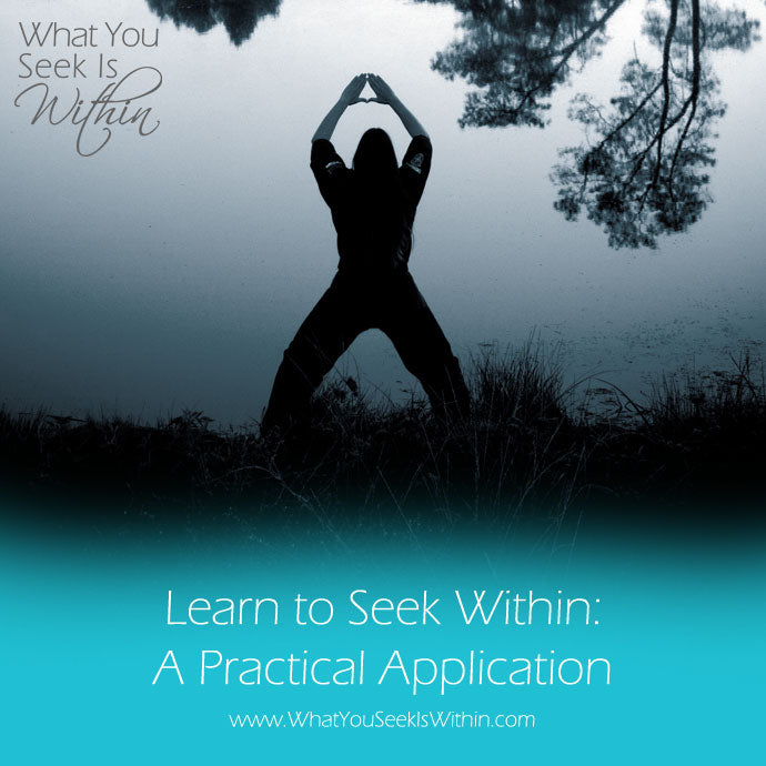 Learning to Seek Within: A Practical Application