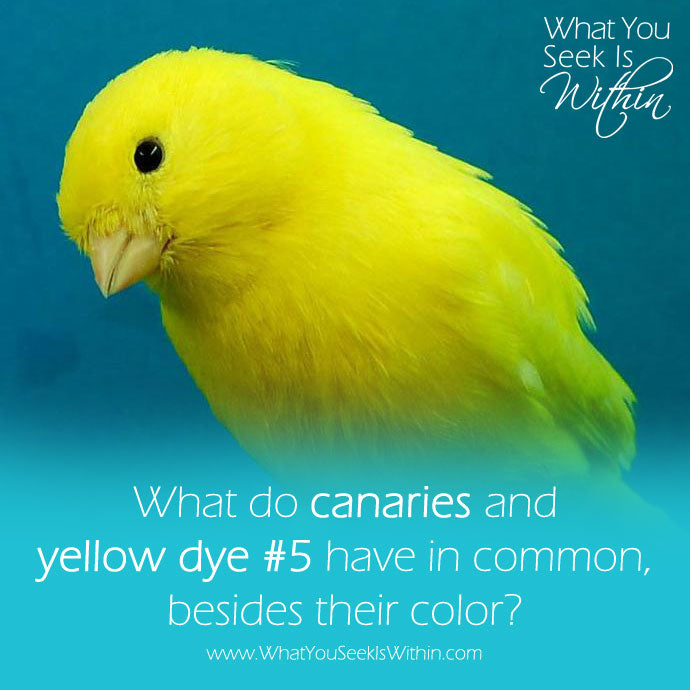 What do canaries and yellow dye #5 have in common, besides their color?