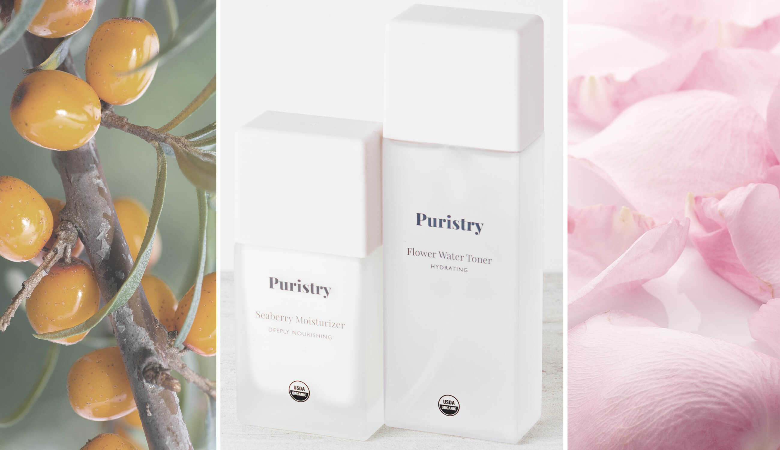 Puristry Products