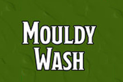 Nolzur's Marvelous Pigments - Mouldy Wash