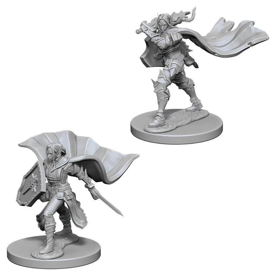 Pathfinder Deep Cuts Unpainted Miniatures: Elf Female Paladin
