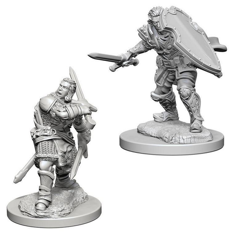 Dungeons & Dragons: Nolzur's Marvelous Unpainted Miniatures: Human Male Paladin