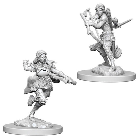 Dungeons & Dragons: Nolzur's Marvelous Unpainted Miniatures: Air Genasi Female Rogue
