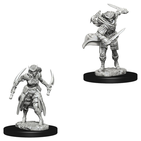 Dungeons & Dragons: Nolzur's Marvelous Unpainted Miniatures: Tiefling Female Rogue