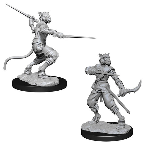 Dungeons & Dragons: Nolzur's Marvelous Unpainted Miniatures: Male Tabaxi Rogue