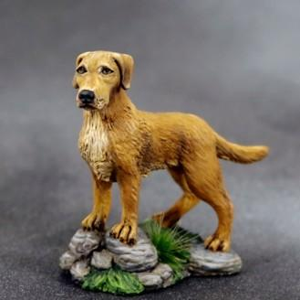 Visions In Fantasy: Labrador Dog