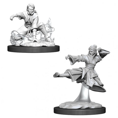Dungeons & Dragons: Nolzur's Marvelous Unpainted Miniatures: Female Human Monk
