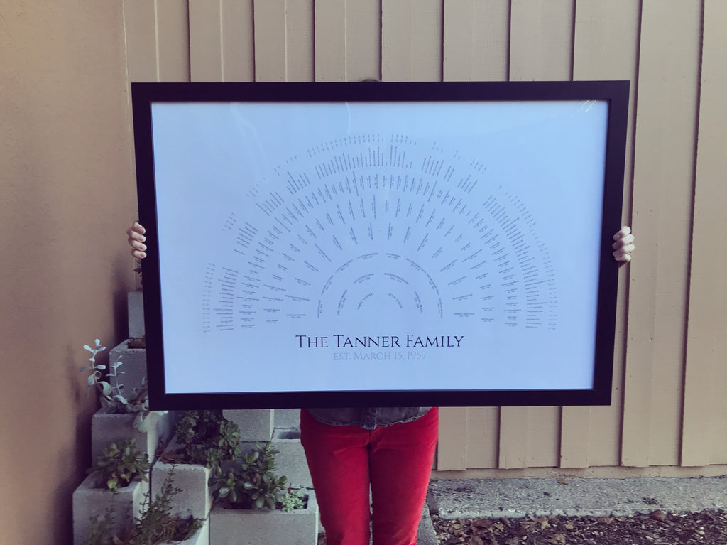 Family Tree Template Feature: White Simplicity Fan Family Tree