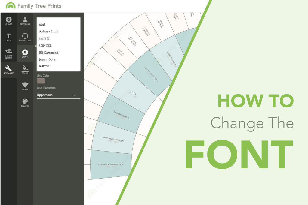 Family Tree Maker: How to Change Font