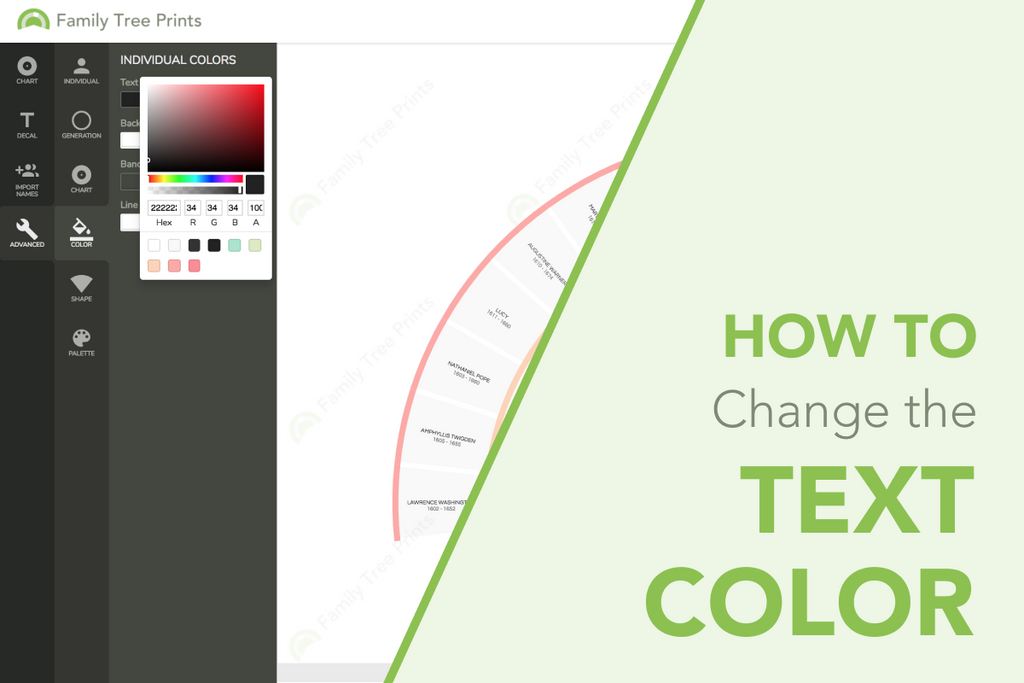 Family Tree Maker: How To Change Font Color