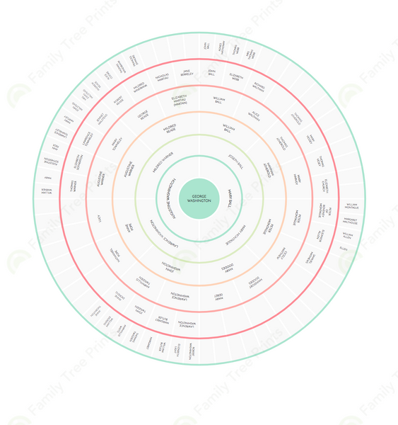 family tree circle chart for an individual not couple