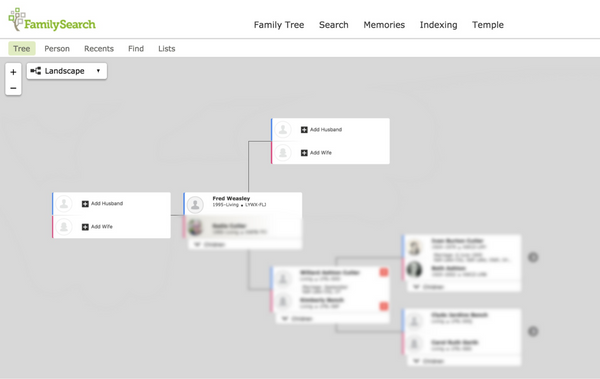 how to add connect to spouse in FamilySearch step 4