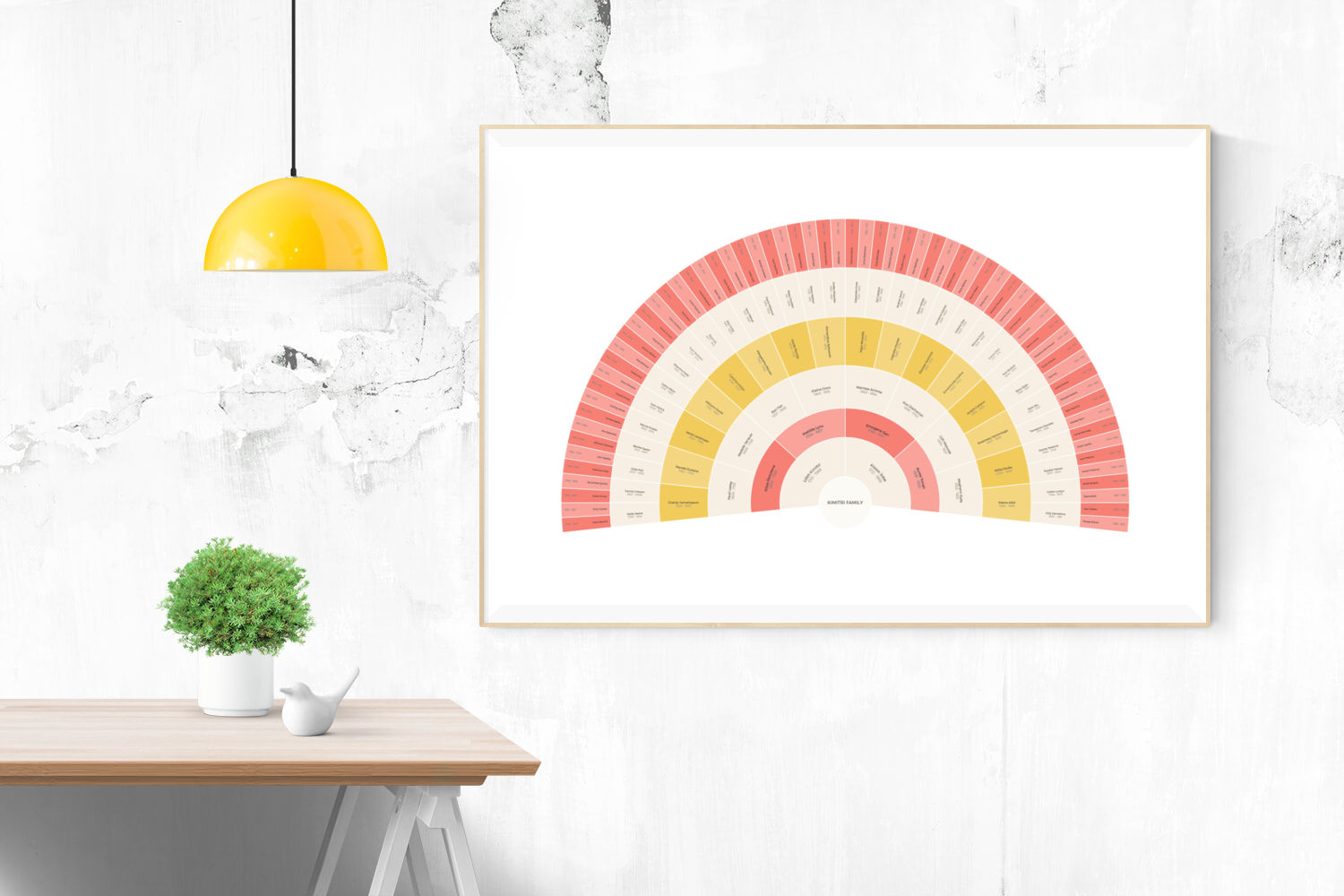 Customizable warm pink and yellow fan genealogy family tree chart for your home--ready in minutes!
