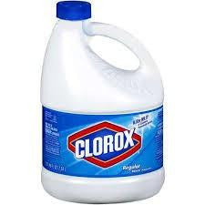 Clorox Bleach Regular