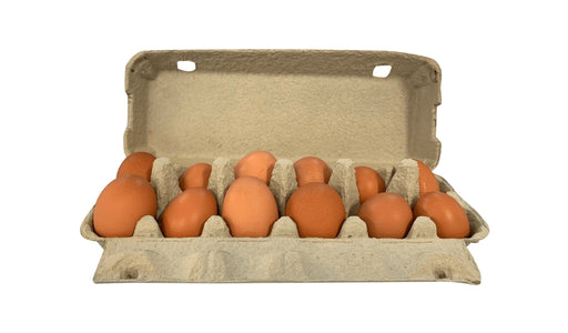 Fresh Eggs (dozen) - MADPACIFIC