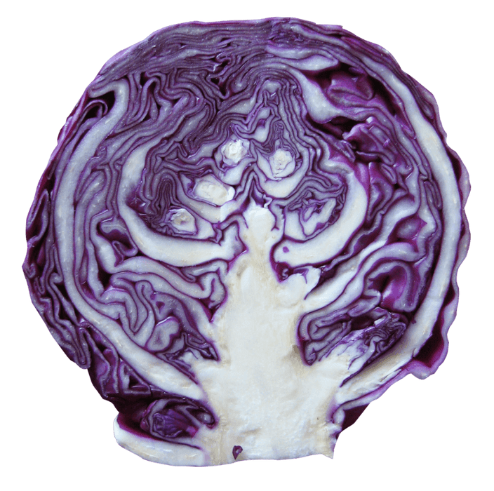 Red Cabbage per kg