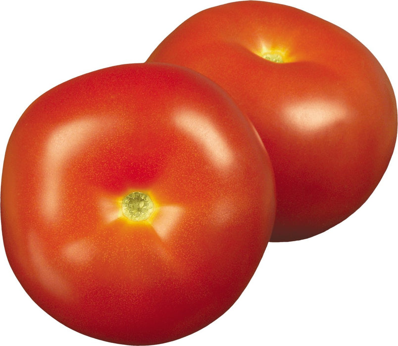 Tomatoes per kg - MADPACIFIC