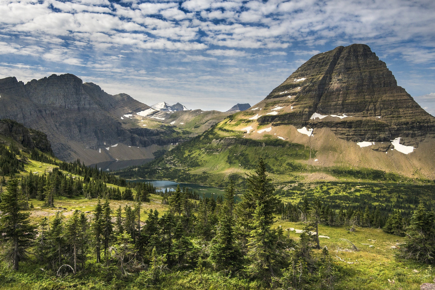View of green trees and snowy mountains at Glacier National Park.
