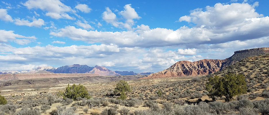Desert Landscape | Public Lands Package » Seek More Wilderness