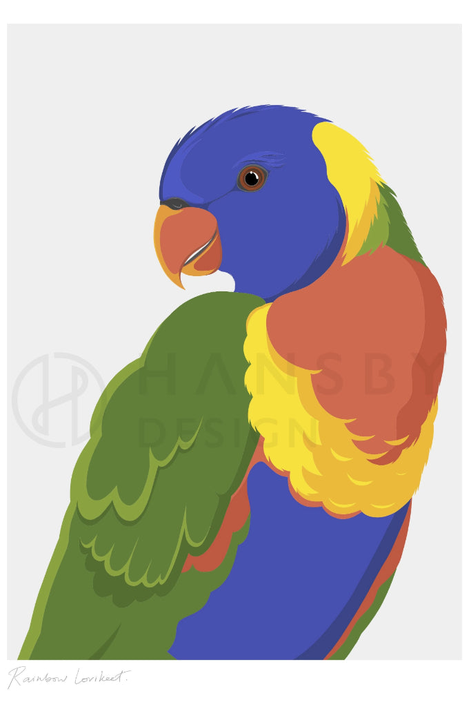 Rainbow Lorikeet Art + prints Ethical Sustainable Vegan Organic Australian fashion womens clothes