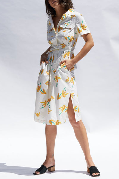 Painted Floral Valeria Cotton Shirt Dress