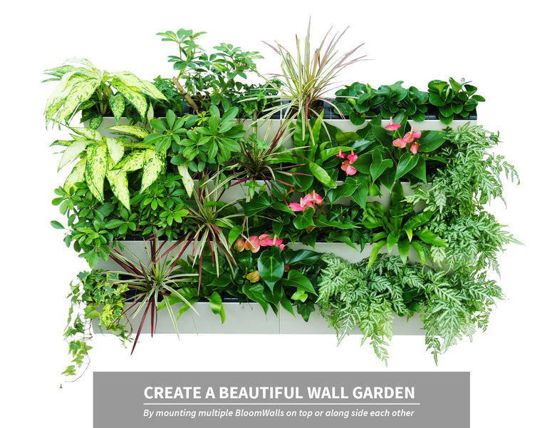 BloomWall - Self Watering Vertical Planter with Hanging Bracket