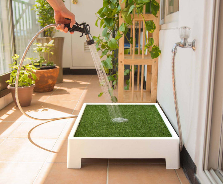 How To Get Rid Of The Smell Of Dog Urine From Artificial Grass