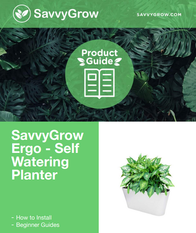 Ergo Self Watering Planter Guide