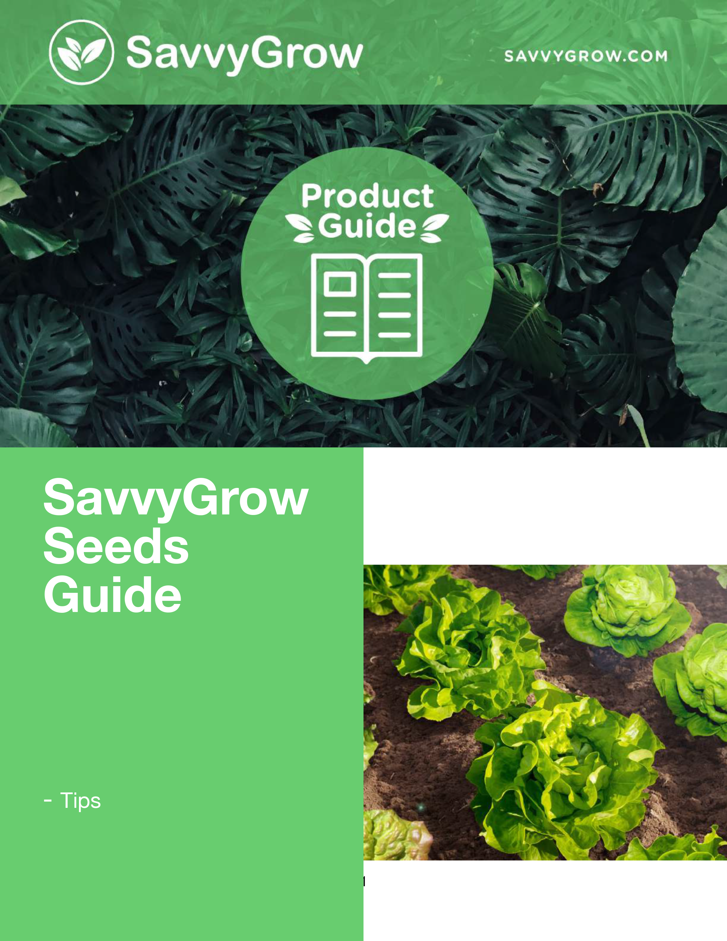 seeds guides