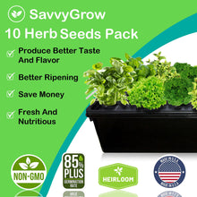 SavvyGrow Heirloom Herb Seeds (10 Type)-Survival Garden Seeds for Planting Include Basil, Mint, Cilantro, Dill - Open Pollinated, 85% Plus Germination Rate, Non-GMO & Source in USA Plant (Herb 4X)