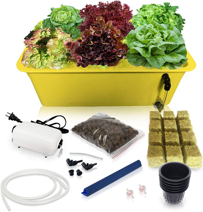 DWC Hydroponic System Growing Kit - Complete Hydroponic Set Up