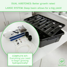 Complete DWC Hydroponics Kit - Large Airstones, Multiple Hole Bucket, Air Pump