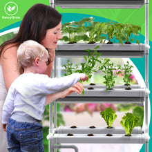 Vertical NFT Hydroponics Growing System